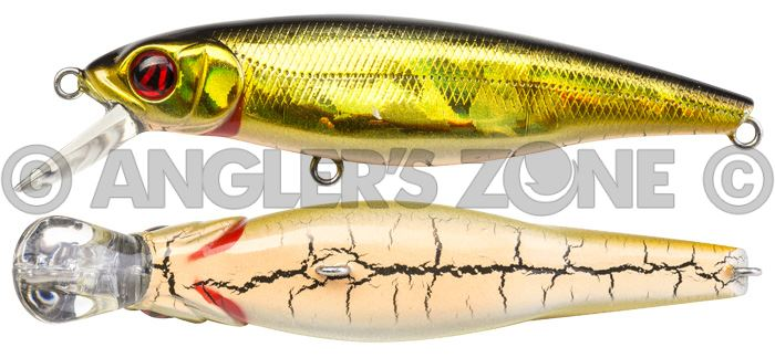 PONTOON21 Greedy Guts 55F-SR